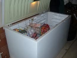 Freezer Repair Paterson